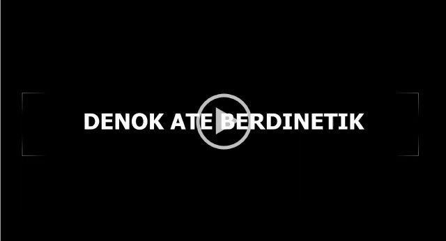 ate_berdinetik